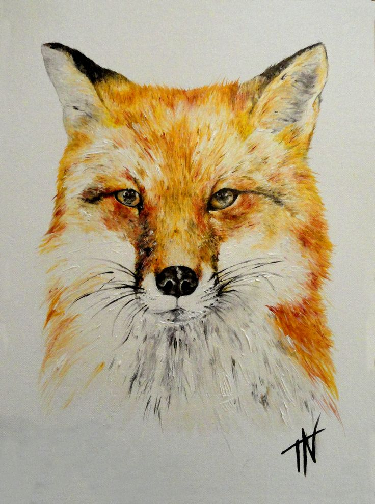 Fox red x geolt art
